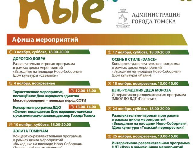 Афиша «Выходные на Новособорной» в ноябре