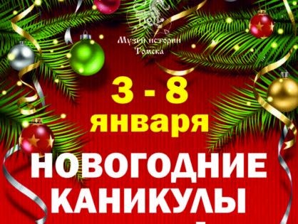 Новый каникулы в Музее истории Томска