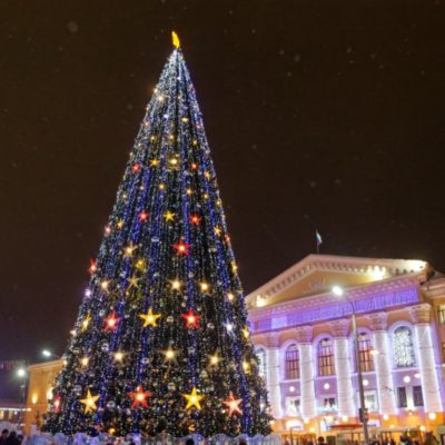 Как проходил фестиваль ледовой скульптуры «Хрустальный Томск»