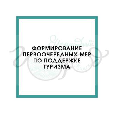 Онлайн конференция «Формирование первоочередных мер по поддержке туризма»